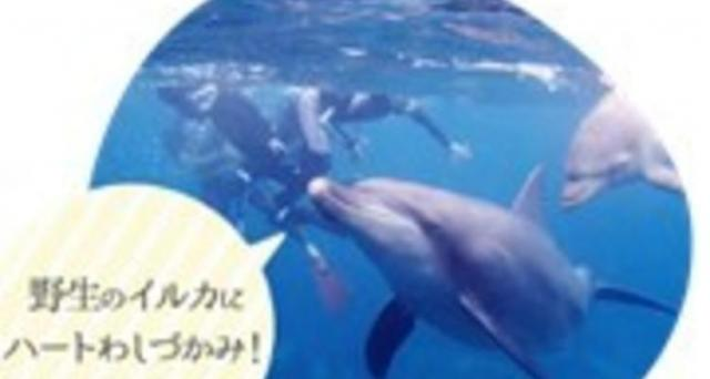 【秋でも大丈夫!池袋から始めるダイビング☆】体験プールダイビング+シュノーケリング講座360分!別世界への入り口がここにあります♪