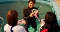 体験ダイビング11,000円(レンタル器材代込み)!初めてのダイビングに最適☆自社提携ダイビング専用プールで仕事帰りにも◎